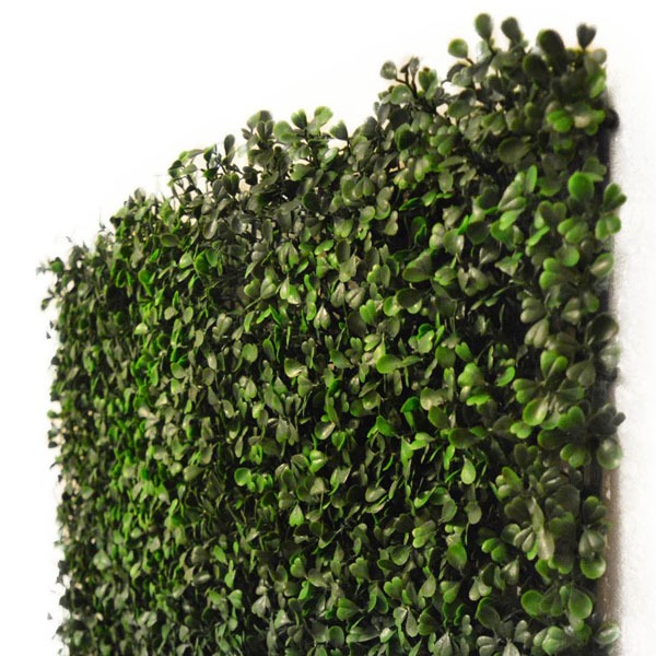 Artificial Fire Retardant Ifr Boxwood Hedging Panel 50cm X 50cm