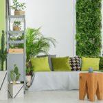 home greenery