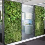 office green wall