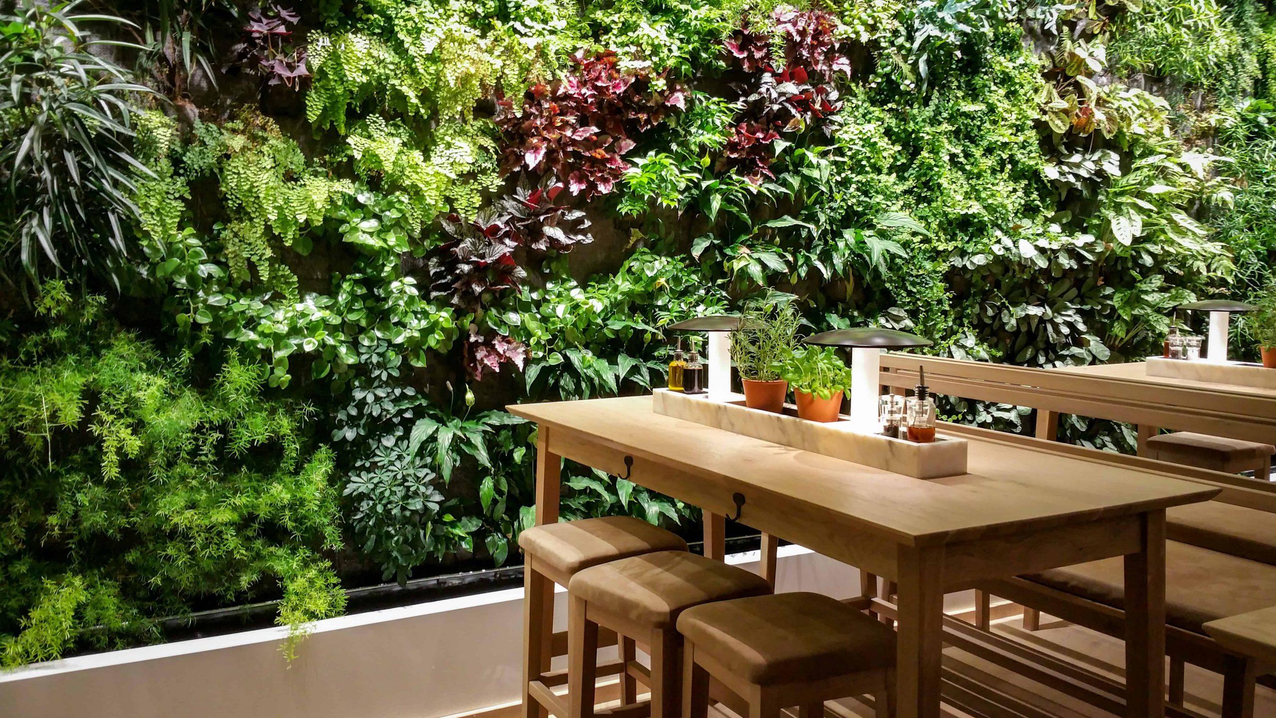 artificial green wall restaurant